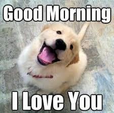 Funny I Love You Meme - good morning i love you meme xyz