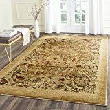 Paisley Area Rugs Paisley Area Rugs Runners Pads Home Décor Home