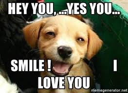 Hey I Love You Meme - hey you yes you smile i love you happy puppy loves you
