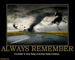 Flying Monkeys Meme - monkeys demotivational poster page