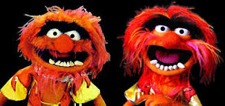 muppet central articles reviews authentic animal muppet photo