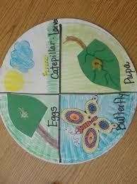 34 best kindergarten caterpillars to butterflies images on