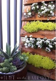 diy vertical gardens are they all safe