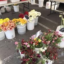 Flowers Irvine California - irvine farmers market 501 photos u0026 311 reviews farmers market