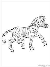 zebra coloring coloring pages