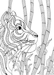 25 colouring ideas colouring
