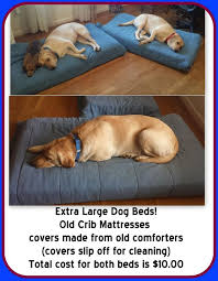 Cost Of Crib Mattress The Best Bed You Won T Believe It But It S True Pet Beds
