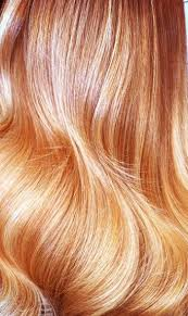 golden apricot hair color fall winter 2014 hair color trends guide simply organic beauty