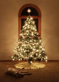 white lights or colored lights tree