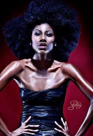 hairstyles from nashville series natural in nashville hair lust model danielle desiree