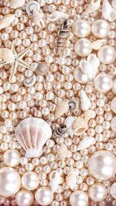 snails on the sea wallpaper seashells wallpapers and iphone 6