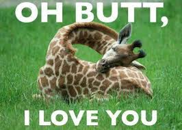 Butt Meme - 20 most funniest giraffe meme pictures and photos