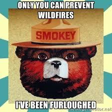 Smokey The Bear Meme - smokey the bear meme guy
