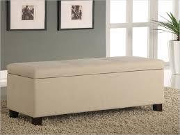 Storage Bench For Bedroom Bedroom Bedroom Seating Best Of Diy Bedroom Storage Bench Seat