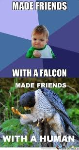 Success Meme Baby - success kid with success falcon by samarth meme center