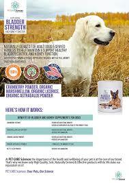 boxer dog kidney problems amazon com best premium bladder strength u0026 kidney function chews