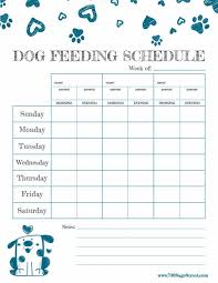 printable evening schedule free printable feeding schedule to track your dog s food wyhbtv44 com