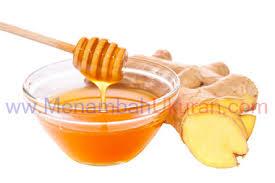 cara membuat ramuan pembesar alat vital penis jahe dan madu zhang