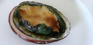cuisiner des ormeaux en bout de table l ormeau l autre coquillage de la côte d emeraude