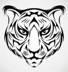 bengal tiger design royalty free vector image