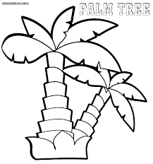coloring pictures of a palm tree palm tree coloring pages coloring pages to download and print