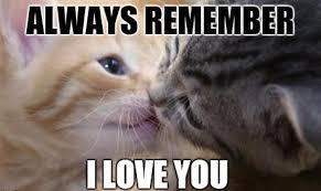 Love Memes For Him - i love you meme funny love memes