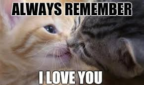 I Love You Memes For Him - i love you meme funny love memes