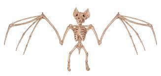 halloween skeleton decorations halloween skeleton decorations get the best tips u0026 tricks for 2017