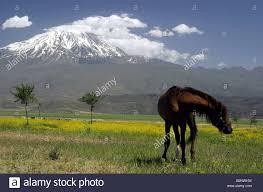 mount ararat snow capped dormant volcano and site of noah u0027s ark