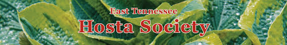 tennessee native plant society home
