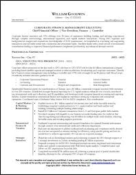 Sample Of Resume With Experience by Sample Cfo Resume Page 1 Resume Examples Pinterest Resume