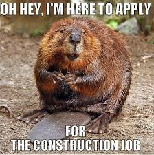 Construction Memes - 7 best construction memes images on pinterest funny stuff