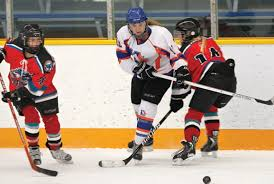 Players Bench Kamloops Minor Hockey Roundup Lions Win Pair Against Pursuit Of Excellence