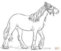 gypsy vanner coloring page free printable coloring pages
