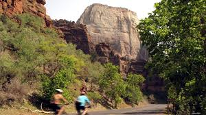quotes zion national park staff picks 11 spectacular roads for riding your bike national