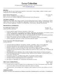 system analyst resume lexa celestine system analyst resume