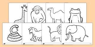 dear zoo colouring sheets u2026 pinteres u2026