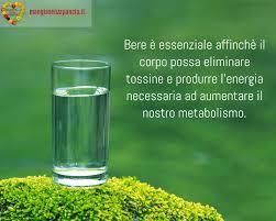 due litri di acqua quanti bicchieri sono bere acqua la sfida degli 8 bicchieri al giorno mangia senza pancia