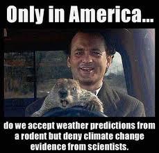 groundhog 2017 memes