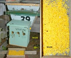 Harvesting Honey From A Top Bar Hive Top Bar Hive Products U2013 200 Top Bar Hives The Low Cost