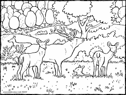 Woodland Animals Themed Colouring Pages Kiddi Kleurprenten Woodland Animals Coloring Pages