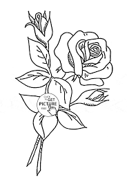 download the beautiful and attractive rose coloring page or print