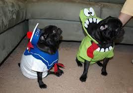 Dogs Halloween Costume Diy Dog Halloween Costumes Easy Tips Tricks Fun Project