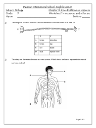 coordination and response m c q worksheet 1 grade 9 nerve