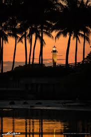 the view jupiter lighthouse and coconut trees