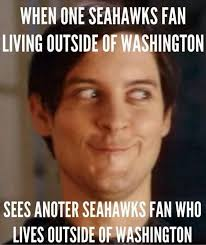 Funny Seahawks Memes - 1000 images about seahawks on pinterest seasons saturday night