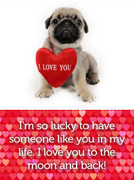 adorable pug love card birthday u0026 greeting cards by davia