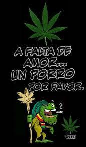 imagenes perronas mota pin by carlos julio on carteles pinterest cannabis