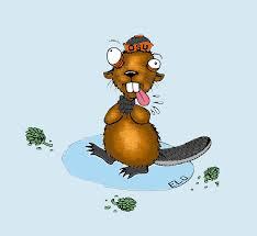 beaver artichoke illustration for ethos magazine online
