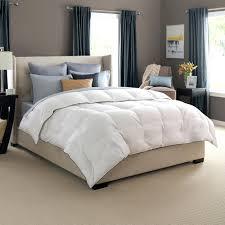 Best Egyptian Cotton Sheets Bedding Design Stupendous Best Bedding Bedroom Interior Bedroom
